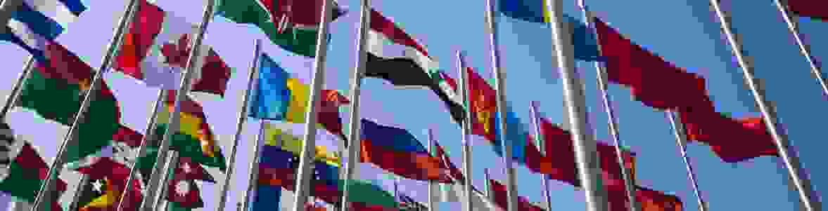 flags-placeholder